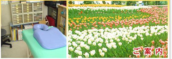埼玉県上尾市早坂療術院|院長プロフィール・アクセツマップページ